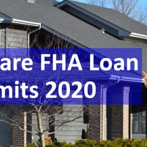 Delaware FHA Loan Limits 2020